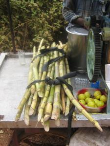 Old Goa - sok z trzciny cukrowej